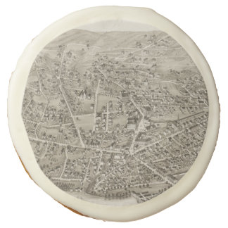 Vintage Pictorial Map of Newton MA (1878) Sugar Cookie