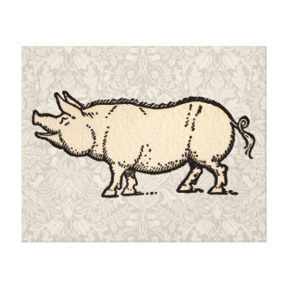 Vintage Pig Antique Piggy Illustration Canvas Print