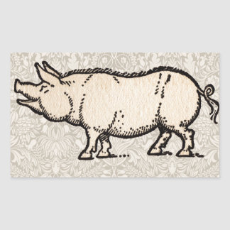 Vintage Pig Antique Piggy Illustration Rectangular Sticker
