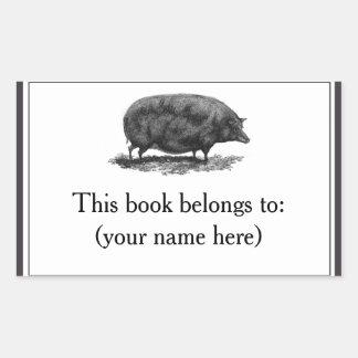 Vintage pig etching bookplate rectangular sticker