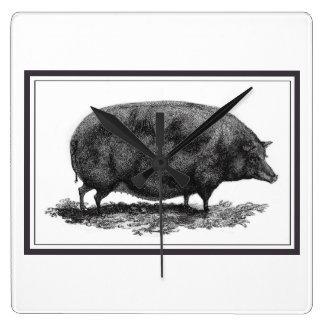 Vintage pig etching with borders clock