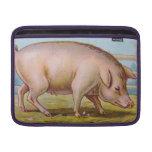 Vintage Pig Illustration MacBook Sleeves