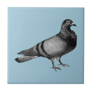 Vintage Pigeon gifts Small Square Tile