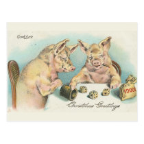 Vintage Pigs Playing Dice Postcard
