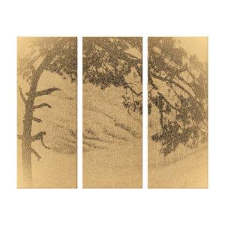Vintage Pine tree silhouette, sunrise Canvas Print