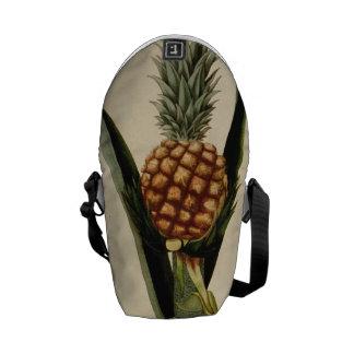 Vintage Pineapple Illustration Courier Bag