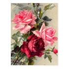Vintage Pink and Red Roses Postcard
