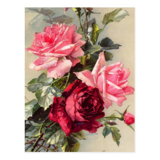 Vintage Pink and Red Roses Postcard