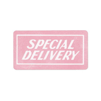Vintage Pink Baby Girl Special Delivery Sticker