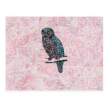 Vintage Pink Blue Cute Owl Postcard