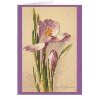 Vintage - Pink Crocus Flower Card