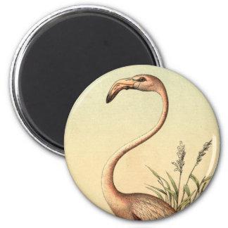 Vintage Pink Flamingo Illustration 2 Inch Round Magnet