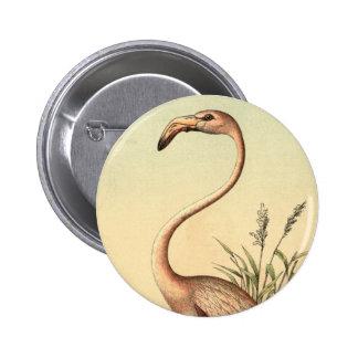 Vintage Pink Flamingo Illustration Pinback Button