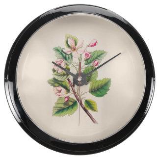Vintage Pink Flowers Blooming, Beige Background Aquarium Clocks