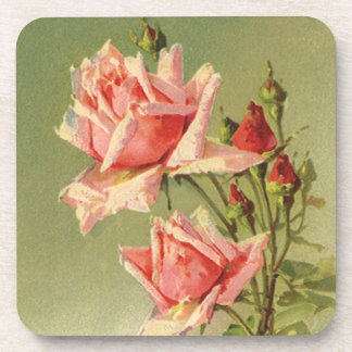 Vintage Pink Garden Roses for Valentine's Day Beverage Coaster