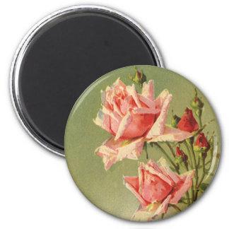 Vintage Pink Garden Roses for Valentine's Day Magnet