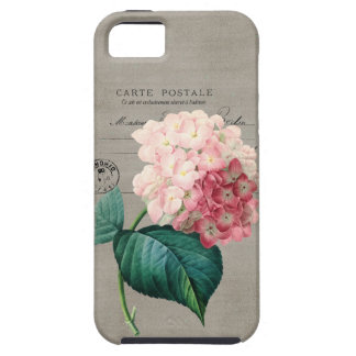 Vintage Pink Hydrangea iPhone SE/5/5s Case