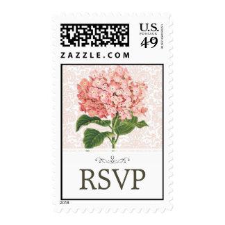 Vintage Pink Hydrangea Wedding RSVP Postage Stamp