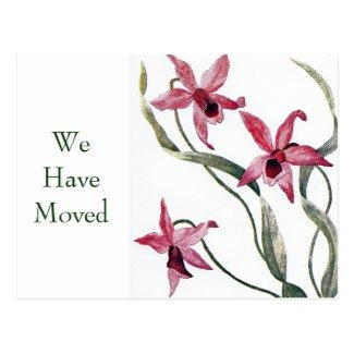 Vintage Pink Orchid Change of Address Postcard