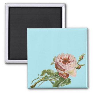 Vintage Pink Rose on Pale Aqua 2 Inch Square Magnet