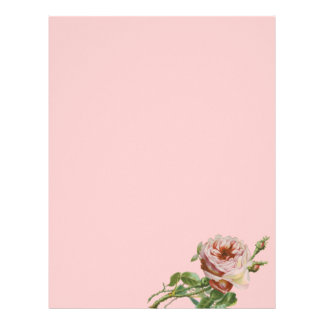 Vintage Pink Rose on Pale Aqua Letterhead