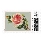 Vintage Pink Rose Postage Stamps