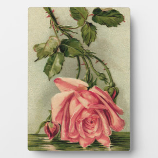 Vintage Pink Rose Upside Down in Water Plaque