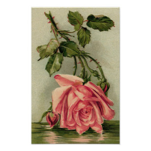 Upside Down Rose Gifts On Zazzle