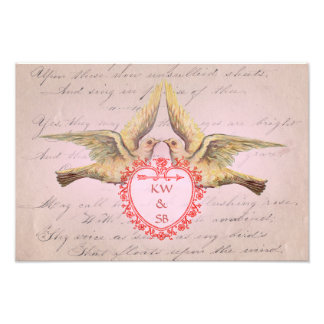 Vintage Pink Valentine Love Doves and Heart Photo Print