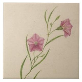 Vintage Pink Wildflowers Tile
