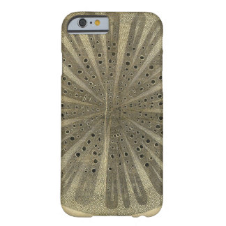 Vintage Plant Anatomy Barely There iPhone 6 Case