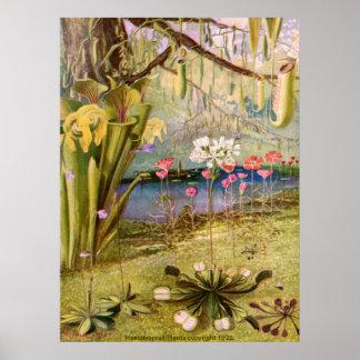 Vintage - plantas carnívoras póster