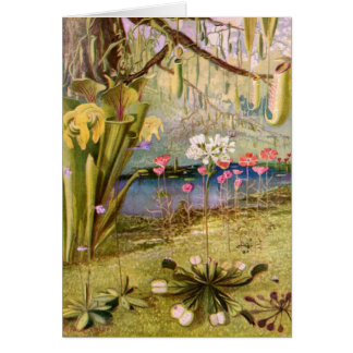 Vintage - plantas carnívoras tarjeta de felicitación