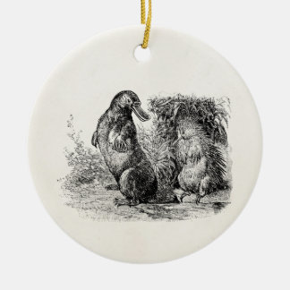 Vintage Platypus Porcupine Anteater Template Ceramic Ornament