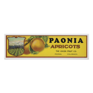 Vintage Poenia Apricots Crate Label, The Union Fru Poster