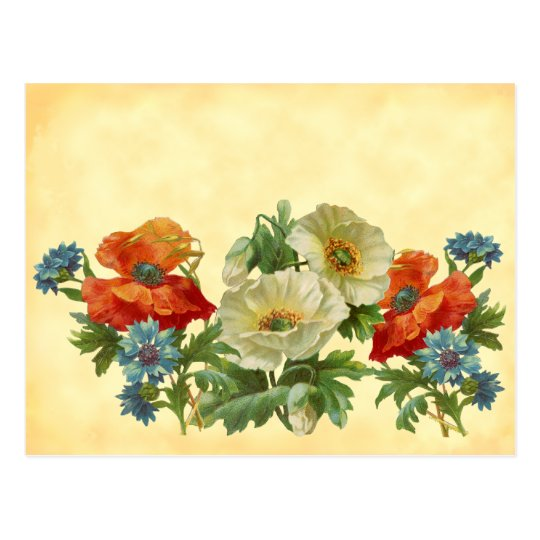 Vintage Poppies and Cornflowers Recipe Cards