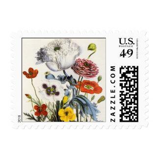 Vintage Poppies in the Garden, Victorian Flowers Postage Stamp