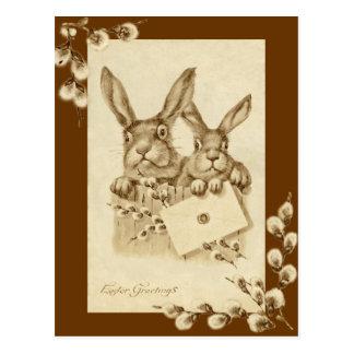 Vintage/postal antigua de la sepia del conejo de P