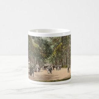 Vintage Postcard Central Park New York City Coffee Mug