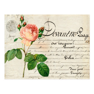 vintage postcard french ephemera coral rose