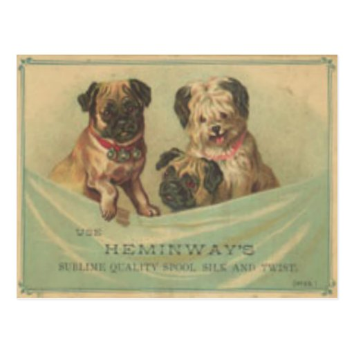 Vintage Postcard With Cute Scrap Book Dogs
