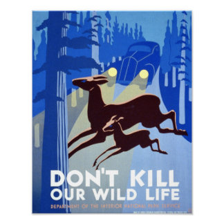Vintage Poster - Don't kill our wildlife