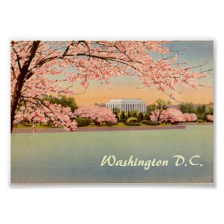 Vintage Poster, Washington DC Poster