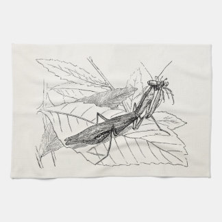 Vintage Praying Mantis Insect Template Towel