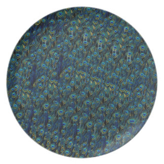 Vintage Pretty Peacock Bird Feathers Wallpaper Plate