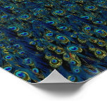 Vintage Pretty Peacock Bird Feathers Wallpaper Posters
