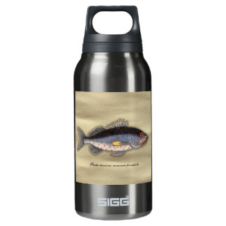 """Vintage Print """"Bahama Rock Fish"""" Insulated Water Bottle"""
