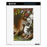 Vintage Print: Kittens playing in the garden Skins For The NOOK Color