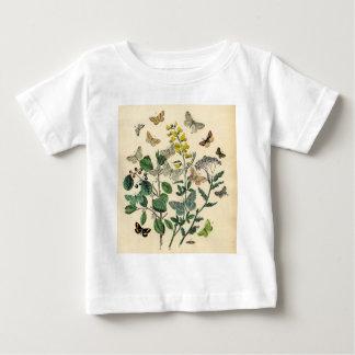 Vintage Print - Lepidoptera - Moths & Butterflies Baby T-Shirt