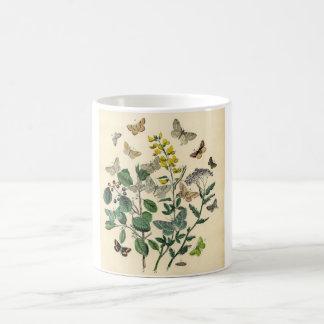Vintage Print - Lepidoptera - Moths & Butterflies Coffee Mug